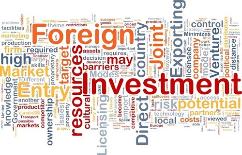 foreign investment - startup article