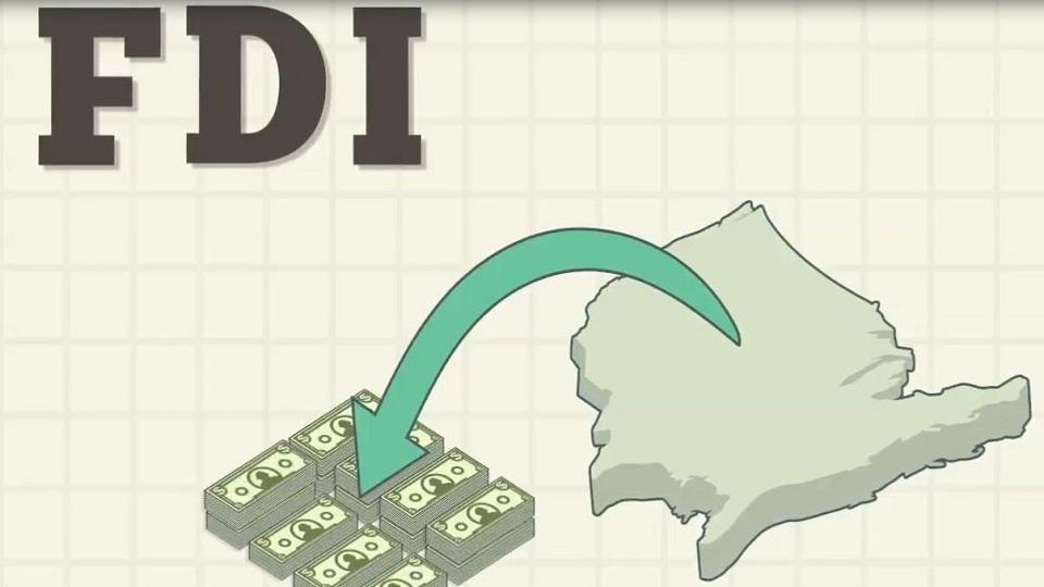 fdi - startup article
