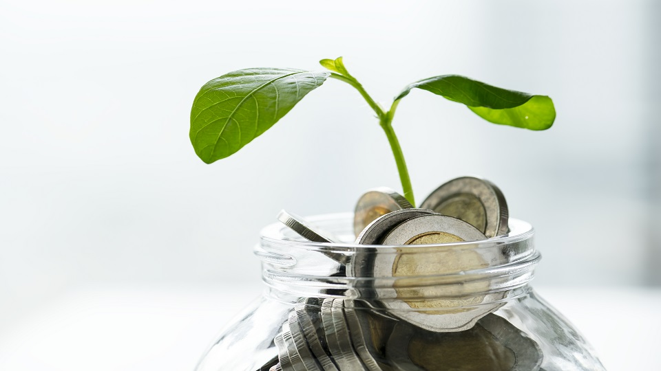 funding programme - startup article