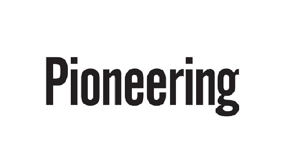 Pioneering - startuparticle